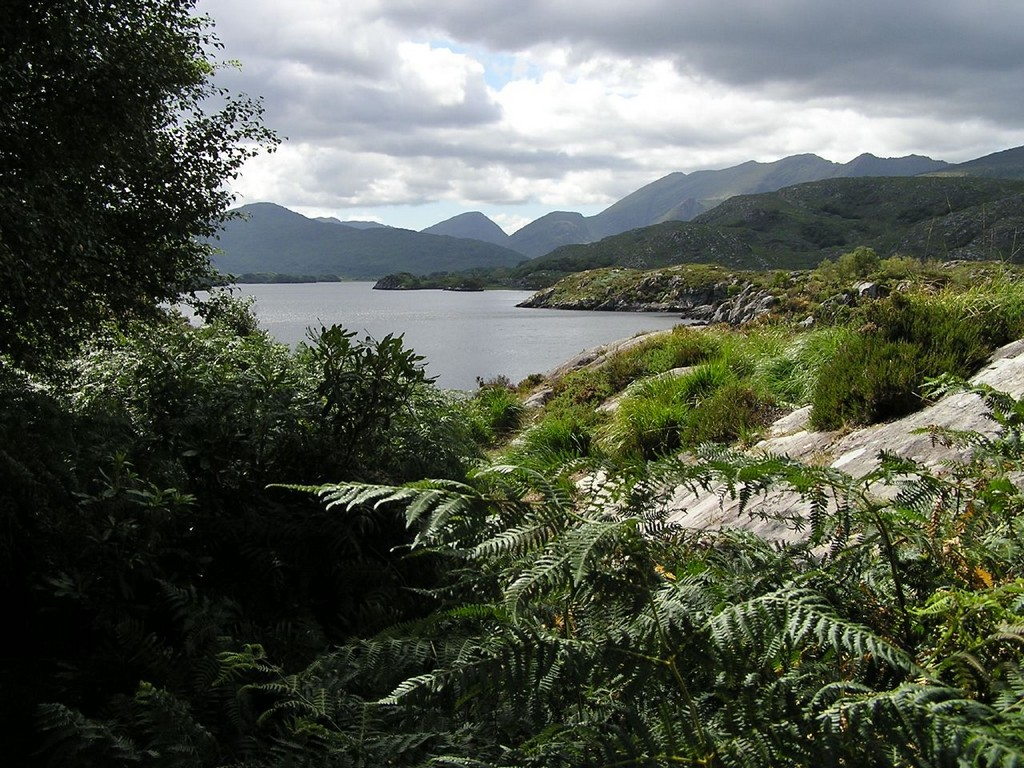 Visit Killarney National Park with Experience Ireland